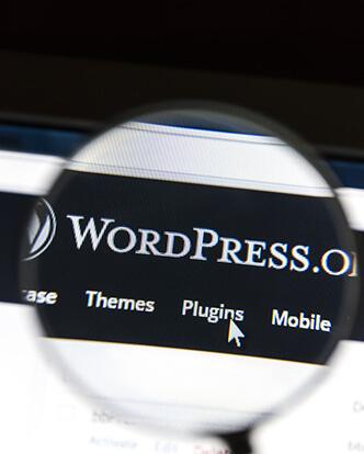 WordPress Development-02